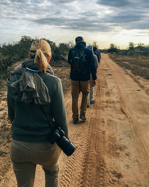 Group of tourists on a walking safari at Africa on Foot, South Africa