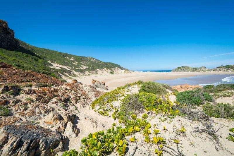 Sandy beach in Garden Route National Park